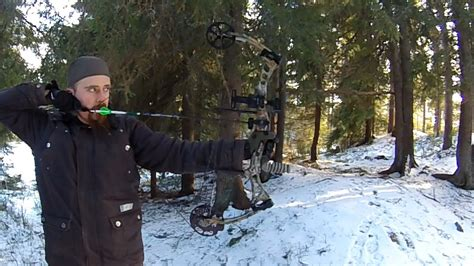 First time shooting compound bow (Encounter by Bear